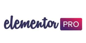 Elementor_logo_pro_rickidwebdesign