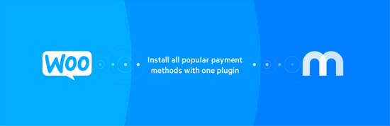 Mollie-Payments-for-WooCommerce